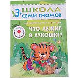 """Четвертый год обучения """"Что лежит в лукошке"""", Школа Семи Гномов"""