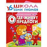 """Седьмой год обучения """"Где живут предлоги"""", Школа Семи Гномов"""