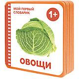 """Мой первый словарик """"Овощи"""" (EVA)"""