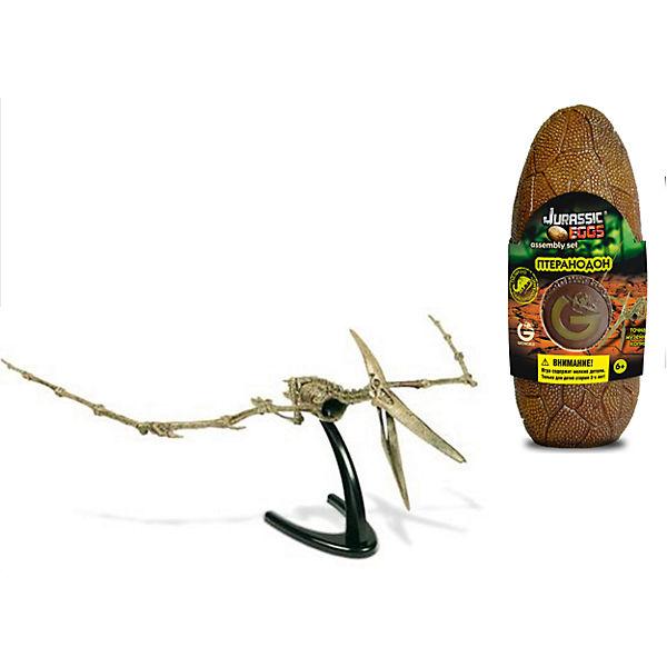 Яйцо динозавра - сборная модель Птеранодон, Geoworld