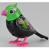 Поющая птичка с кольцом, красно-зеленая, DigiBirds