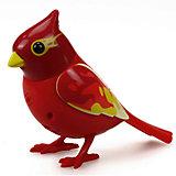 Поющая птичка с кольцом, красно-желтый, DigiBirds