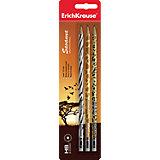 Набор из 3-х чернографитных карандашей с ластиком SAVANNA (HB), Erich Krause
