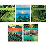"""Комплект тетрадей """"Природная гармония"""" (10 шт), 48 листов, Канц-Эксмо"""