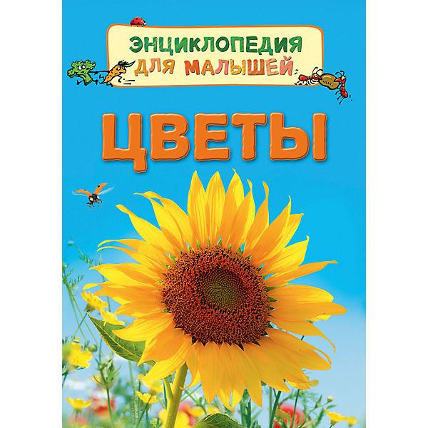 """Энциклопедия для малышей """"Цветы"""""""