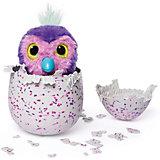 """Интерактивная игрушка Spin Master """"Hatchimals"""" Пингвинчик (розовый/фиолетовый)"""
