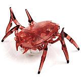 """Микро-робот """"Cкарабей"""", вишневый, Hexbug"""