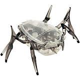 """Микро-робот """"Cкарабей"""", черный, Hexbug"""