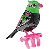 Поющая птичка с кольцом, черно-зел, DigiBirds