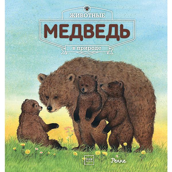 Животные в природе: Медведь