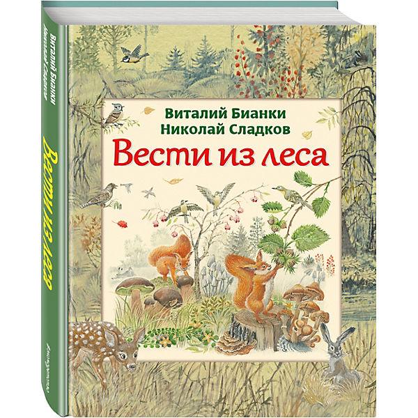 Вести из леса, ил. М. Белоусовой