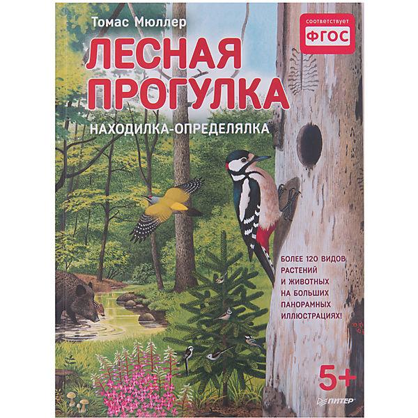 """Книжка с иллюстрациями """"Лесная прогулка"""""""