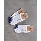 Носки ( 3 пары) для мальчика Modniy Juk