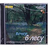 """CD """"Вечер в лесу"""""""
