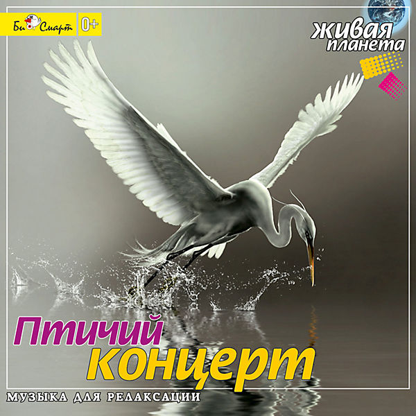 "CD ""Птичий концерт"""
