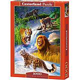 """Пазл """"Дикие кошки"""", 1000 деталей, Castorland"""