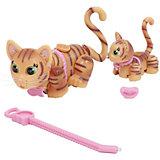 Игровой набор Семья рыжых кошек, Pet Club Parade