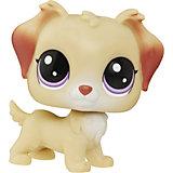 Зверюшка, A8228/B9825, Littlest Pet Shop, Hasbro