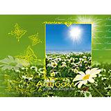 Альбом-планшет для рисования на гребне 40 листов, обложка  с тиснением фольгой. Обложка Летний парк