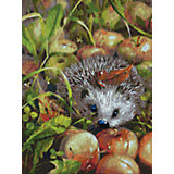 Живопись на картоне 30х40см  Яблочный ёжик Белоснежка