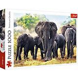 Пазлы Африканские слоны, 1000 элементов