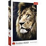 Пазлы Портрет льва, 1500 элементов