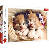 Пазлы Спящие котята, 500 элементов