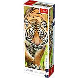 Пазлы Затаившийся тигр, 300 элементов