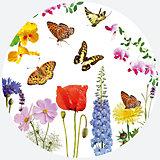 Тарелки Бабочки