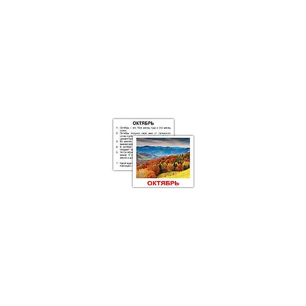 """Набор обучающих мини-карточек Вундеркинд с пелёнок """"Времена года"""" 40 штук"""