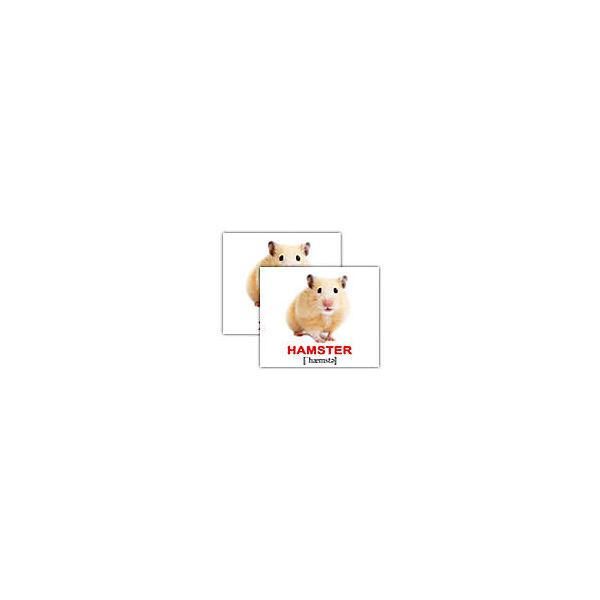 """Набор обучающих мини-карточек Вундеркинд с пелёнок """"Domestic animals/Домашние животные"""", двухсторонний 40 штук"""