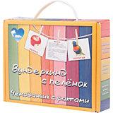 Подарочный набор обучающих карточек Вундеркинд с пелёнок Чемоданчики с фактами
