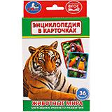 """Карточки развивающие """"Животные мира"""" 36 карточек"""