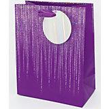 Пакет премиум ВСpr размер 178х230