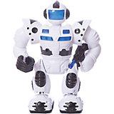 Электромеханический робот Fun Toy