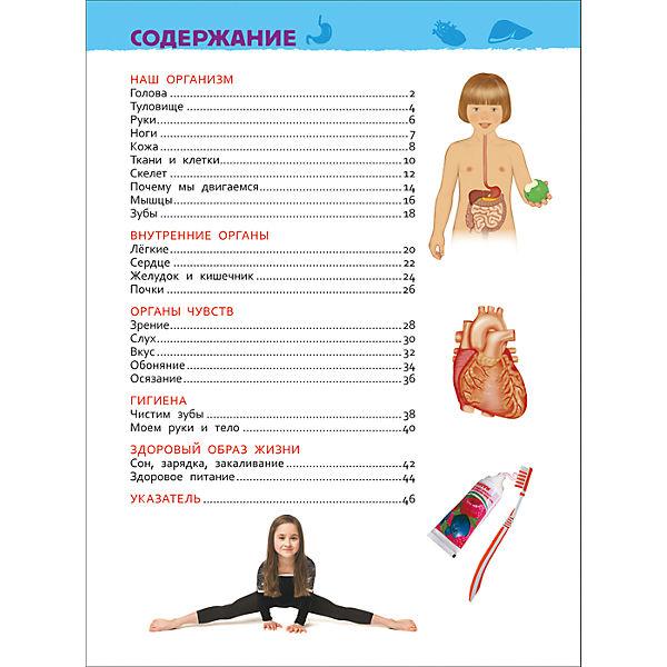 Тело человека. Энциклопедия для детского сада