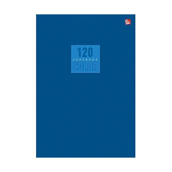 Стиль и цвет. Синий 120л.