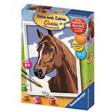 Раскрашивание по номерам «Лошадь»