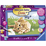 Раскрашивание по номерам «Котенок на траве» Размер картинки – 18*13 см