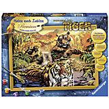 Раскрашивание по номерам «Тигры» Размер картинки – 40*30 см