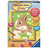 Раскрашивание по номерам  «Кролик в ромашках» Размер картинки
