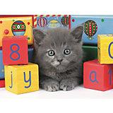 Пазл светящийся «Котенок с кубиками» XXL 200 шт