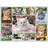 Пазл «Галерея котят» 500 шт