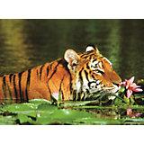 Пазл «Тигр в лилиях» 500 шт
