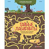 """Большая книга лабиринтов """"Тайные лабиринты"""""""