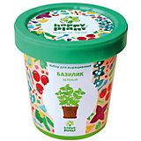 Набор для выращивания Базилик зеленый