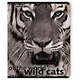 Тетрадь Дикие кошки New 48 листов, клетка, 5 шт., рисунок в ассортименте