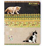 Тетрадь Кошки-Мышки 48 листов, клетка, 5 шт., рисунок в ассортименте