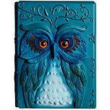 Дневник совы