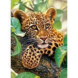 Пазл Ягуар на дереве, 300 деталей, Castor Land